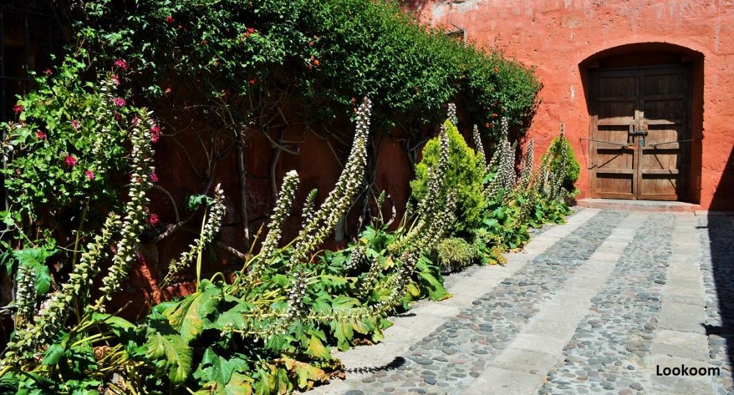 Cour des livraisons, Santa Catalina, Arequipa, Pérou
