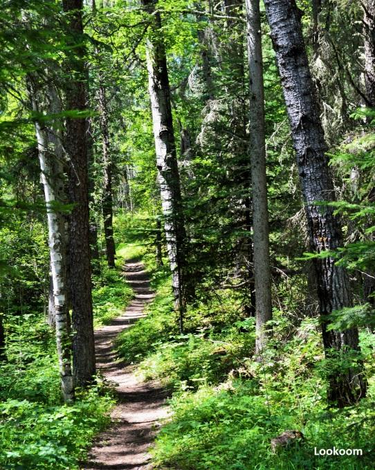 Parc national de Prince Albert, Canada